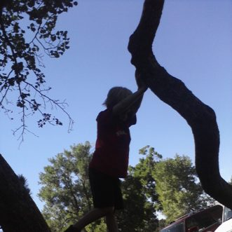 Day Three: Climbing Trees